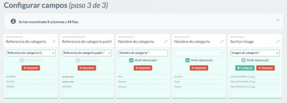 Ejemplo configuración campos de categorías